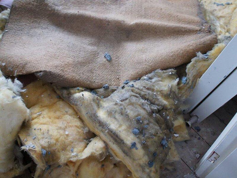 asbestos removal 03