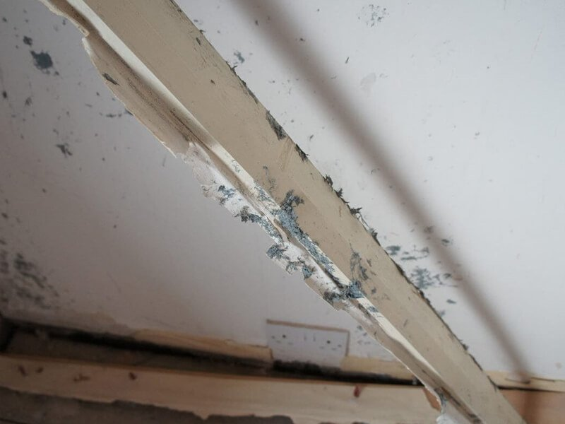 asbestos removal 04